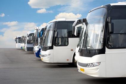 Wynajem autobusów i busów BORT PTTK