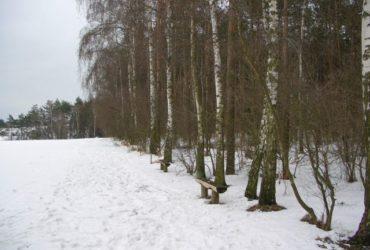 Wycieczka karnawałowa /Leszno i okolice