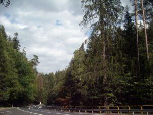 Karkonosze i Kotlina Jeleniogórska